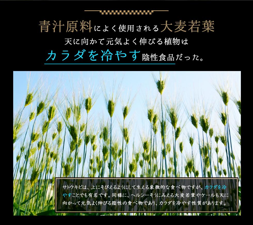 青汁原料によく使用される大麦若葉天に向かて元気よく伸びる植物はカラダをひやす陰性食品が多くある。サトウキビはカラダを冷やすことで有名