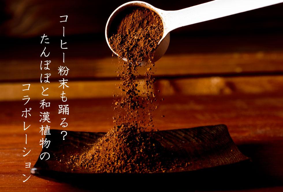 コーヒー粉末も踊る?たんぽぽと和漢植物のコラボレーション