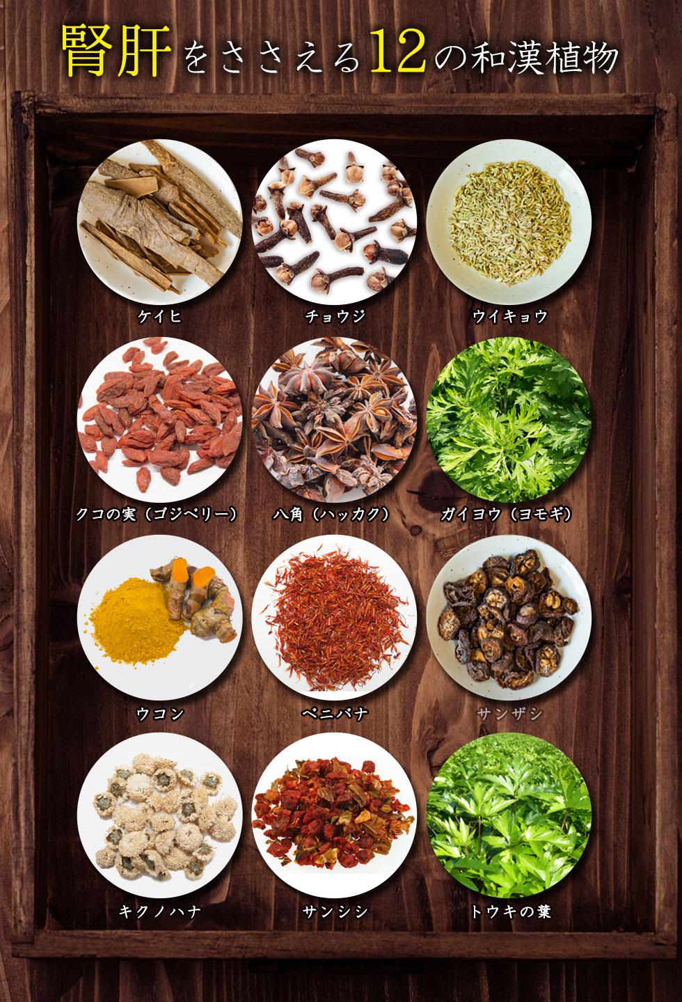 腎肝を支える12の和漢植物